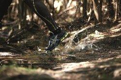 Buty sportowe do bieganie, Wane Gunn