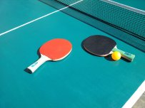 paletki na stole do tenisa