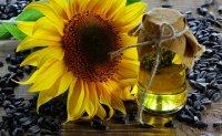 bioolej ze słonecznika